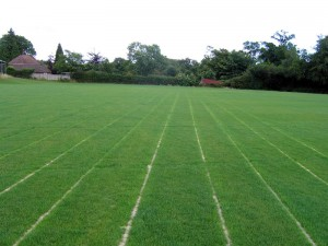 Heathfield and Waldron RFC